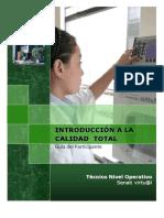 manual_introduccion_calidad.pdf