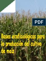 Ecofisiología maíz 2004 (1) TIF.pdf