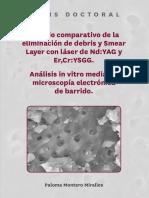 Tesis Doctoral - Paloma Montero Miralles (1)