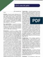 [06] Dermatitis Zona del Pañal