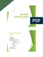 1.3.INFORME_BRUNDTLAND.pdf