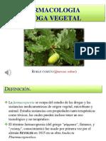 recursos naturales diapositivas.pptx