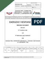 ERP Bridging Document Rev 00