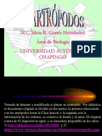 0 TEMA Los Artropodos ParteI Cortado DSilviaCortesHdez UAChapingo Mex