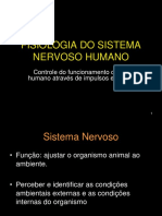 Sistema Nervoso Humano 1 - Professor Junior