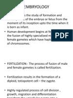 Embryology 07.02.17
