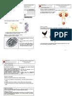 Examen biología prueba de acceso