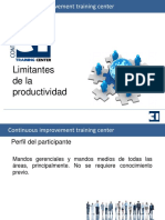 Limitantes de la productividad.pptx