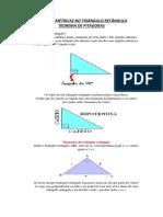 O Teorema de Pitagoras