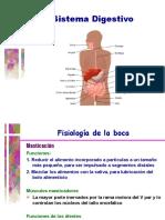 digestivo. generalidades
