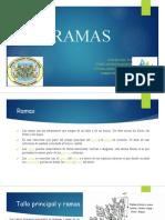 Ramas