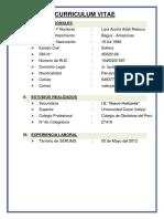 Curriculum Vitae 01.docx