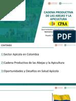 3 Apicultura en Colombia Retos y Perspectivas 22.11.18
