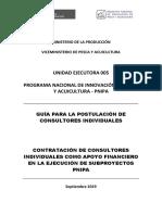 Guia de Postulacion Convocatoria Apoyo Financiero