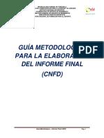 2qef GUÍA METODOLOGÍCA - INFORME FINAL CNFD 2018-2019 - 10