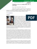 DEFINICIÓN CONCEPTUAL DE LAS ALTERACIONES DE LA