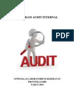 Program Audit Internal