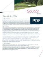 Bayer Solutions - TakeAllRootRot - Warm