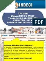 03 Edan Peru 2018 Evaluacion Rapida