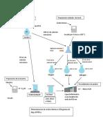 Diagramas de Flujo de Acidos Humicos