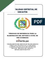 TDR PISTAS Y VEREDAS QUETAPALO.docx