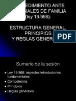 Estructura General, Principios y Reglas Generales Ley19968