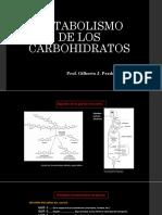 Metabolismo de Los Carbohidratos Hasta Antes de Krebs