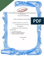 Monografia de Geologia Flor