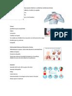Enfermedades cardiovasculares.docx