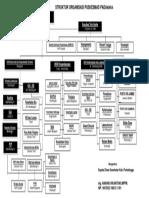Lampiran Struktur Organisasi Puskesmas Padamara