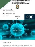 Retrovirus Mv