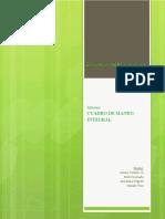 Informe CMI_toro_castillo_coronado_negrete.pdf