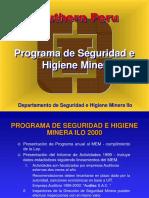 Programa de Seguridad 2000