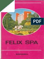Felix Spa Romania