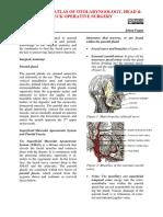 parotid.pdf