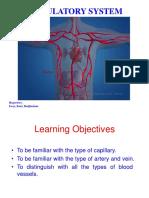 Histo Circulatory System FINAL