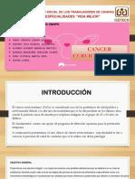 cacu(1).pptx