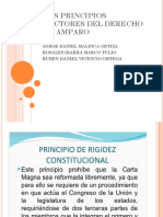Los Principios Rectores Del Derecho de Amparo.pptx-1355677479