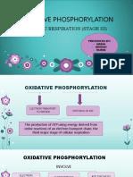 Oxidative Phosphorylation 1
