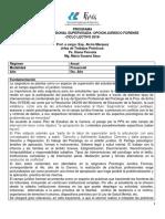 2019 Programa Pps Juridico Forense Uader (1)