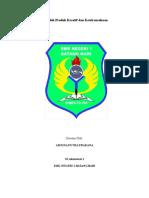 Prakarya dan kewirausahaan bab 2