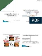 Aula_2_-_Adaptações,_Lesão_Celular_e_Morte_Celular. (1).pdf