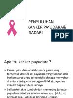 Varicele pelvine - simptome și tratament