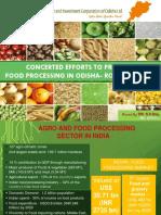 Food Processing DPR
