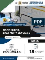 temario_diploma_osce_siaf_siga_seace-3.pdf