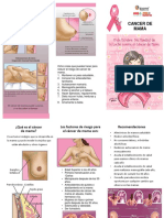 Triptico cancer de mama- Copia