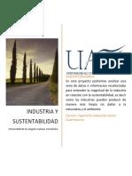 Proyecto Ecologia INDUSTRIA Y SUSTENTABILIDAD