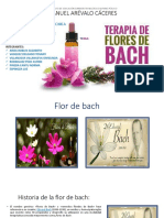 Aromaterapia Flores de Bach