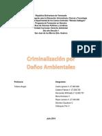 Criminalizacion Por Daños Ambientales