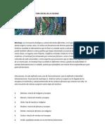 El Mestizaje y La Estructura Social en La Colonia